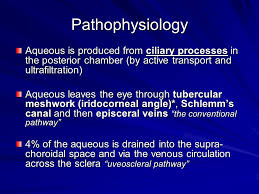 Glaucoma Ppt Download