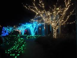 christmas lights outdoor trees warisan lighting. Related Post For Christmas Lights Outdoor Trees Warisan Lighting Outstanding Twinkle K