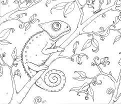 Elegant Best Color Pens For Coloring Books And Happy Chameleon