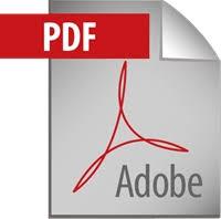 Risultati immagini per pdf icon