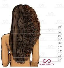 Curly Hair Length Chart Pin By Bye