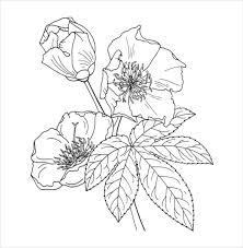 Small Picture Flower Coloring Pages 22 Free PSD AI Vector EPS Format