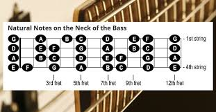 Bass Guitar Fretboard Notes Chart Notes On The Neck Of The Bass Cyberfretbass Com