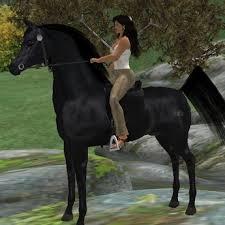 black arabian horse running. Exellent Running Black Arabian Horse Running  Photo8 To Arabian Horse Running C