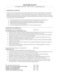 Business Management Resume Objective Project Management Objectives Examples Project Management Resume