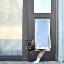 window cat door horizontal window cat door sliding glass dog door removable dog door sliding glass