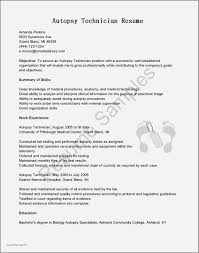 High School Music Resume Examples New Formats For Resumes Best Make