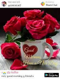 gud mrng uhcado emu l19936367 posted on sharechat good morning