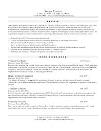 Fake Resume Example fake resume examples Savebtsaco 1