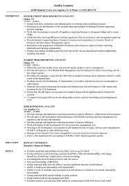 Reporting Analyst Resume Sample Risk Reporting Analyst Resume Samples Velvet Jobs 23
