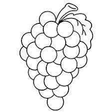 Small Picture Top 25 Free Printable Lovely Grapes Coloring Pages Online