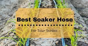 garden soaker hose. garden soaker hose o