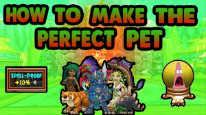 How To Make The Perfect Pet Wizard101
