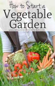 Kitchen Garden Project 17 Best Ideas About Home Vegetable Garden On Pinterest Home