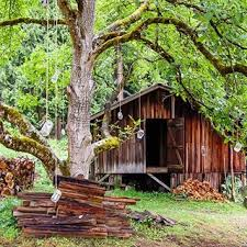 treehouse masters spa. Treehouse Masters Spa S
