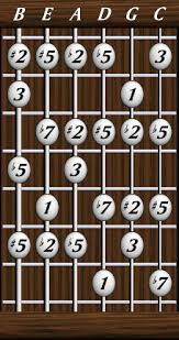 Daves Six String Bass Resource Page Scales The Melodic