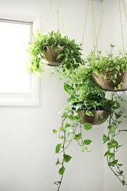 diy hanging planters out of metal bowls