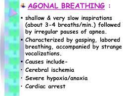 Abnormal Breathing Patterns New Breathing Patterns