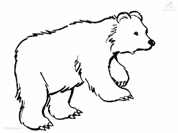 Small Picture Bear Coloring Pictures Trend With Picture Of Bear Coloring 20 10540