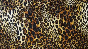 animal print desktop wallpaper. Leopard Print Wallpapers HD With Animal Desktop Wallpaper