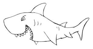 Shark Outline White Shark Coloring Page Just Free Image