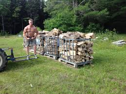 Does anyone move firewood on pallets?-068-jpg