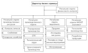 Организационная структура предприятий Формирование структуры  Рис 30 Структура управления бизнес единицы