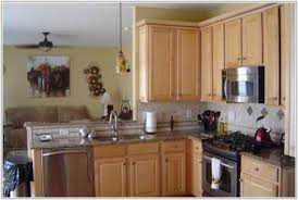 Small Picture Best Material For Kitchen Cabinets In Kerala Cabinet Home