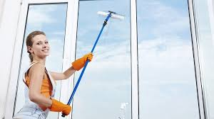 hire professional window cleaners