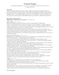 Senior Auditor Resume Staff Auditor Resume Sample Auditor Resume