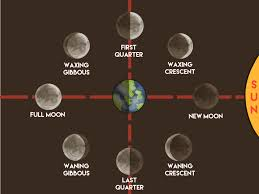 Moon Chart Moon Phases Lessons Tes Teach
