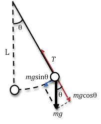 diagram of the pendulum moving length of the string is denoted by l the