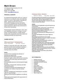 Teacher Curriculum Template Teacher Cv Template Lessons Pupils Teaching Job School