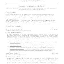 Free Visual Resume Templates Best of Html Resume Example Free Professional Resume Templates Html Resume