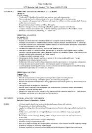 Analytics Resumes Director Analytics Resume Samples Velvet Jobs