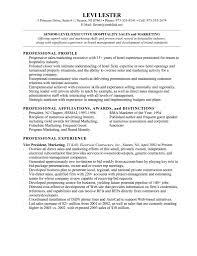 marketing resume skills resume format pdf marketing resume skills epic marketing resume skills 73 additional basic resume template marketing