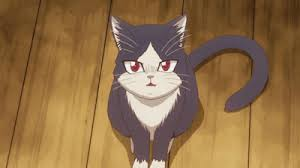 I'm honestly surprised how triggered people were when simply talked to in anime speak. Neko Neko Nee Dance Gif Google Search