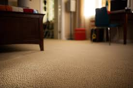 brown carpet floor. 2 Brown Carpet Floor V