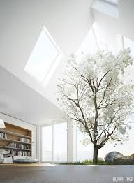 Decorations:Skylight Designs Simple Decoration With Indoor Plants Also  White Ceiling Paint Idea Skylight Designs