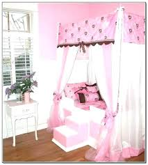 Canopy Toddler Bed Girl Frame Boy Girls For Bedrooms Astounding ...