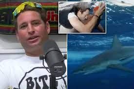 Jackass' star suffers shark bite while ...