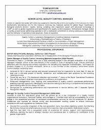 Resume Format Civil Engineer Sample Resume For Civil Engineering