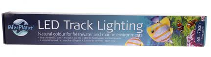 blue track lighting. Blue Planet LED Track Lighting 60cm 2