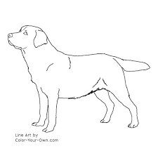 Small Picture Dog Labrador Retriever Coloring Page