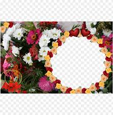 flower photo frames hd png image with