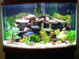 S Bathroom Fish Tank Office Outstanding Aquarium Smells Like