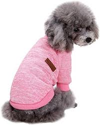 Fashion Focus On Pet Dog Clothes Knitwear Dog ... - Amazon.com