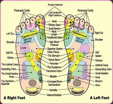 Left Foot Organ Chart Pin By Shannon Page On Energy Healing Foot Detox Foot