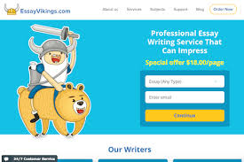 essayvikings review i hate writing essays essay vikings overview