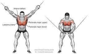 Pin En Chest Exercises